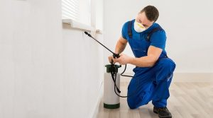 How Does Pest Control Work? Service Technician Spraying Under Window Ledge