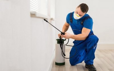 How Does Pest Control Work?